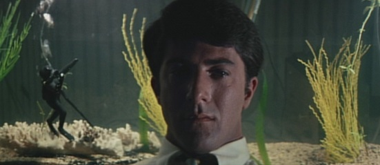 The graduate_ben_aquarium